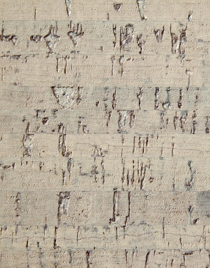 Download Corkwood background stock photo. Image of wall, abstract - 32251924