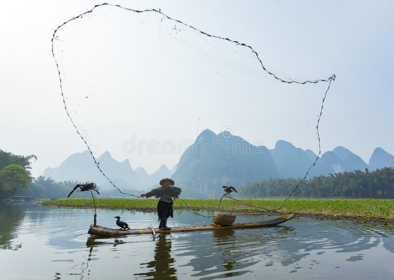 Cormorão, homem dos peixes e de cenário de Li River vista com névoa no sprin imagens de stock