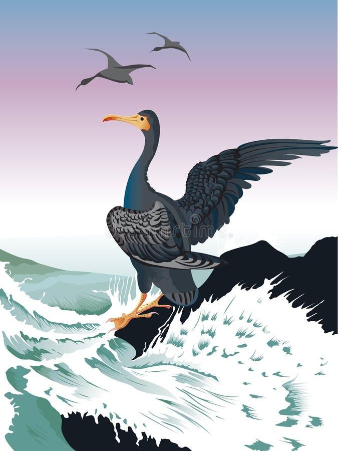 Cormorant sur la roche attend illustration de vecteur