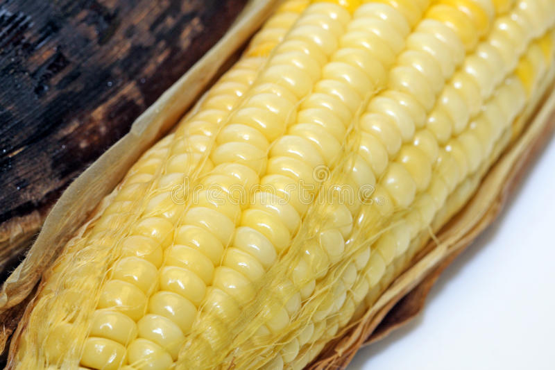Download Corn stock photo. Image of yellow, close, grilling, vegetable - 13004788