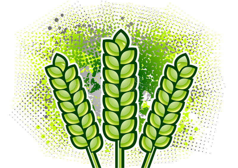 Download Corn stock vector. Image of background, decor, farming - 15614842