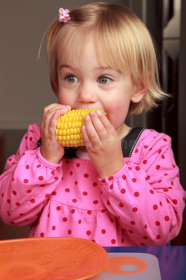 Download Corn Royalty Free Stock Photography - Image: 20852637