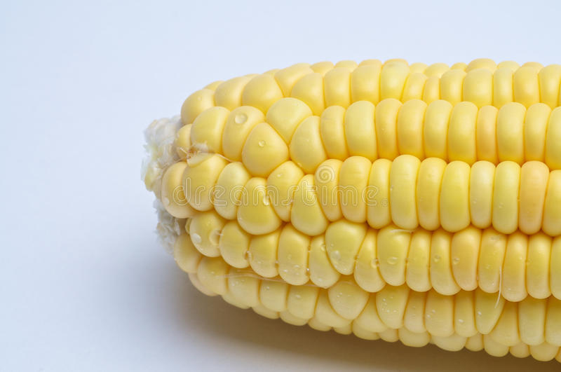Download Corn Stock Photography - Image: 22127392