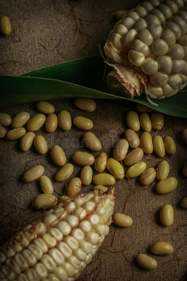 Corn and beans. Corn with bean seed on wood and a nice background stock photos