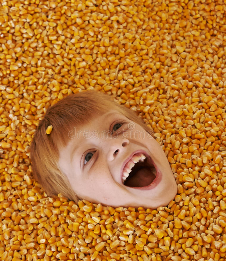 Download Corn boy stock image. Image of playing, autumn, field - 35958395