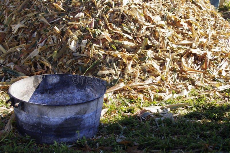 Corn bucket. Metal bucket by pile of corn husks stock photo