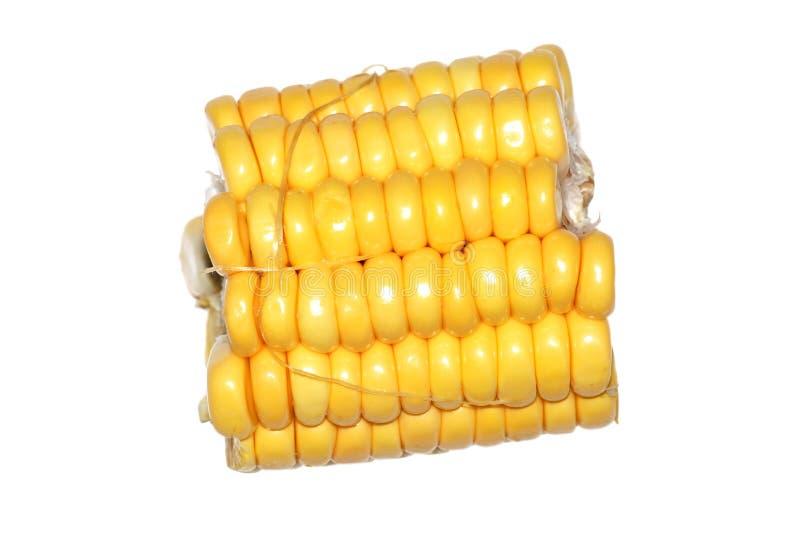Download Corn cob stock photo. Image of fruit, delicious, color - 11890434