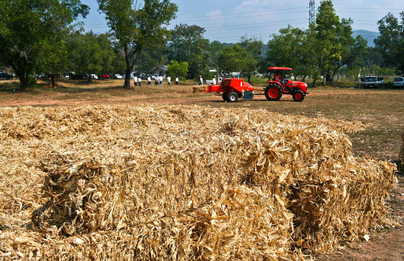 Corn cob briquette and tractor orange color. On field royalty free stock photo