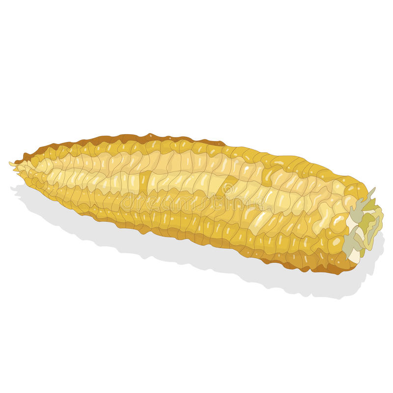 Download Corn On The Cob Kernels Stock Vector - Image: 83713818