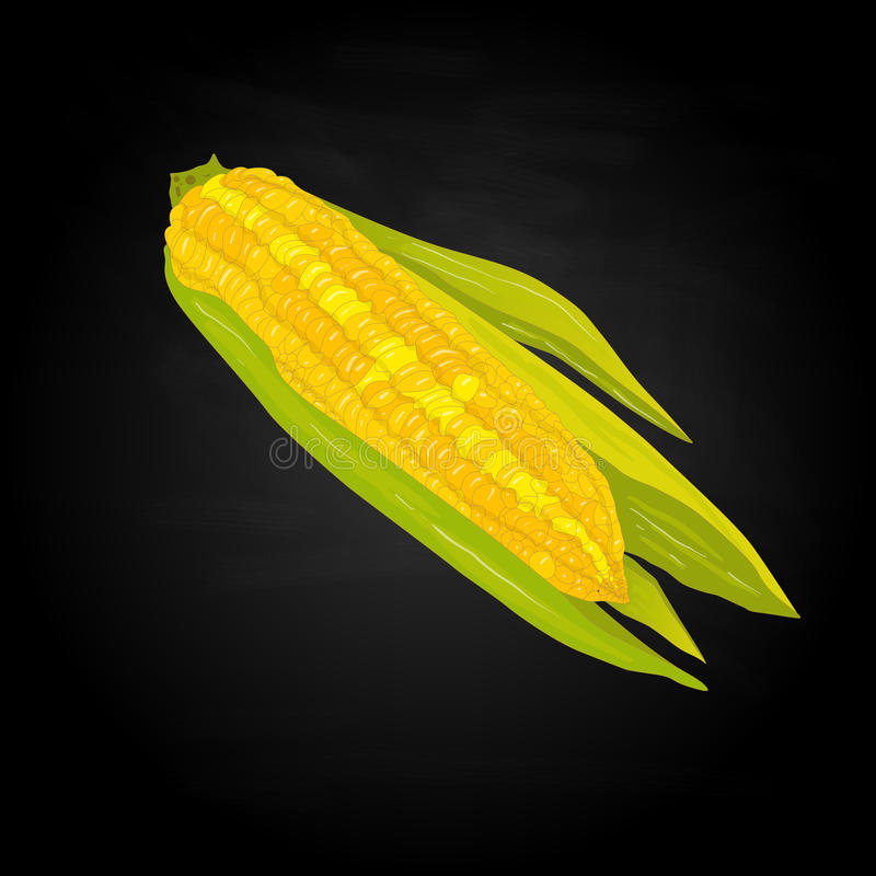 Download Corn On The Cob Kernels Stock Vector - Image: 83715146