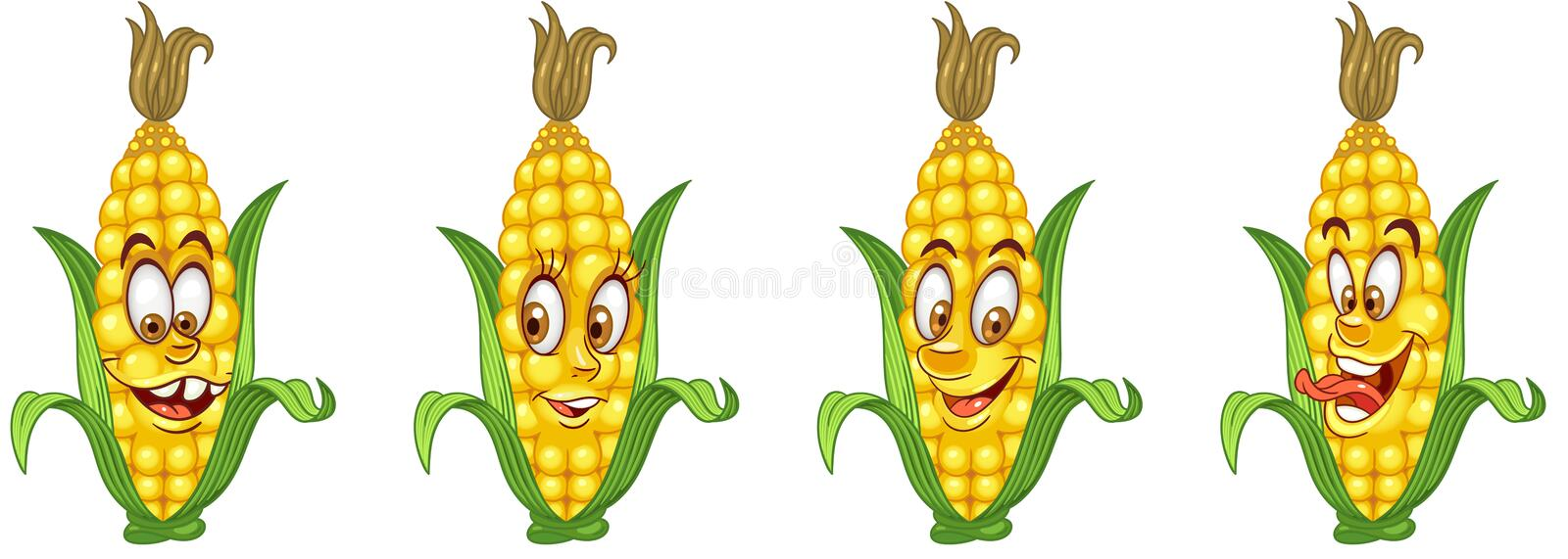 Corn Cob. Vegetable Food concept stock photography