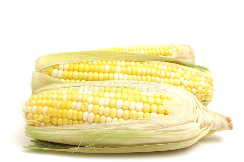 Stock Photos  Corn On The Cob On White Picture. Image  2350133 8f1e40b4d57