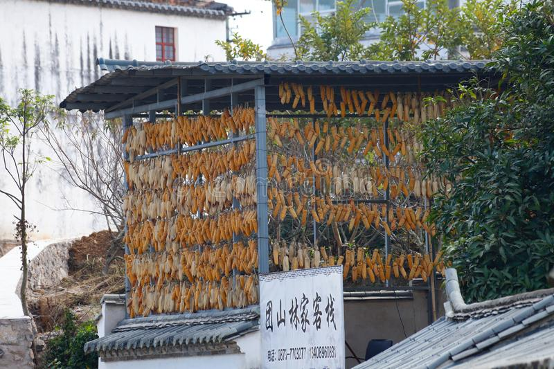 Corn cobs in the historic center of the village of Tuanshan. Yunnan, China royalty free stock photos