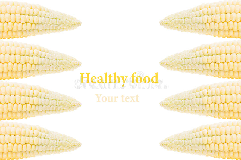 Corn cobs on a white background. Isolated. Decorative frame. Food background. Copy space royalty free stock photo