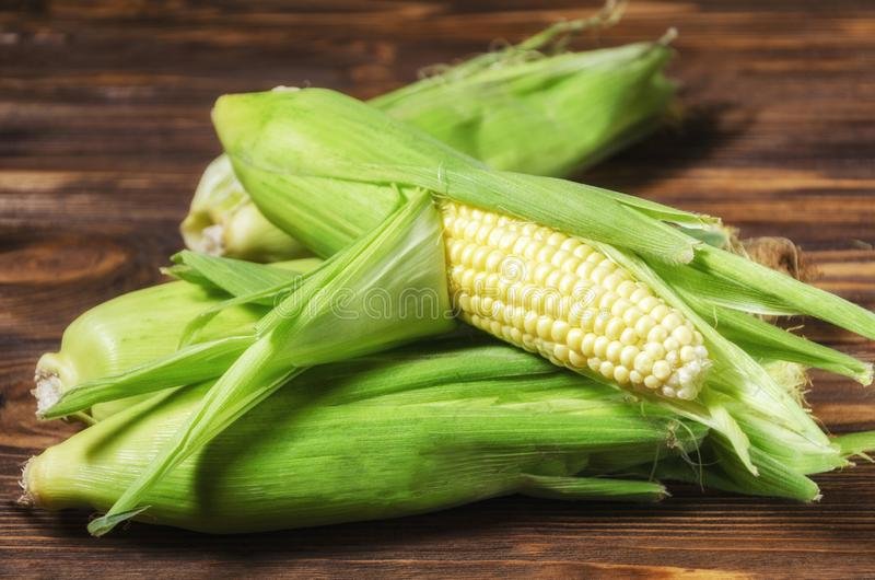 Corn cobs on a wooden table stock image