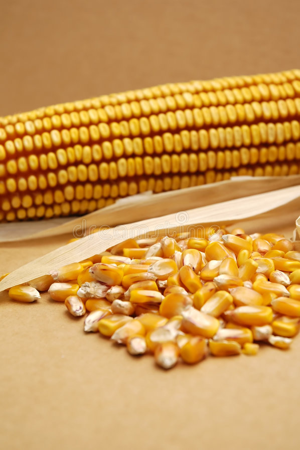 corn dietetyczne jedzenie zdjęcia stock