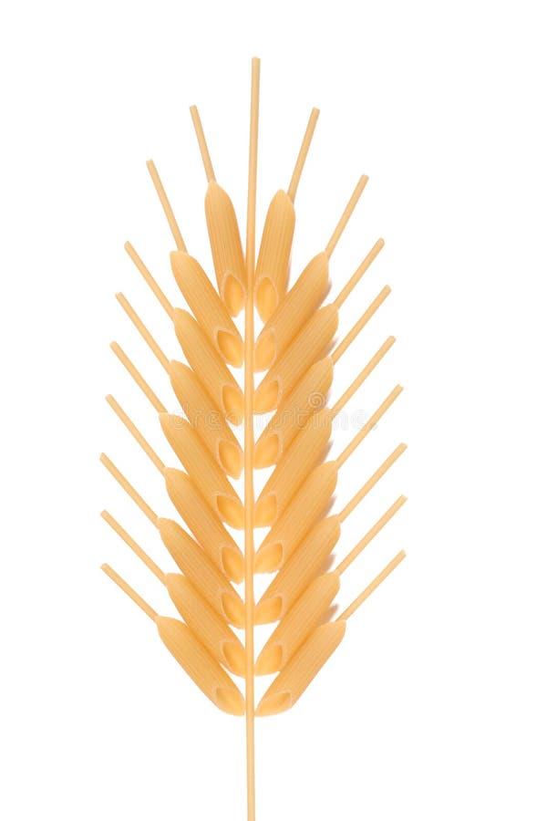 Free Corn Ear Royalty Free Stock Image - 1562996