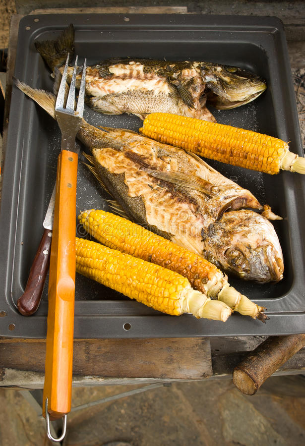 Download Corn and fish on bbq stock image. Image of dinner, grilling - 26630851
