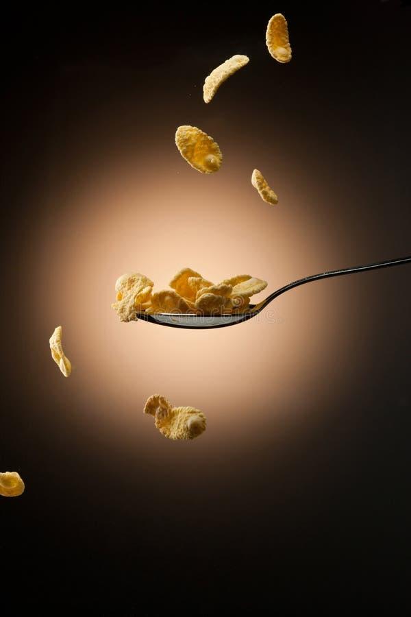 Download Corn flakes stock photo. Image of muesli, background - 23422682
