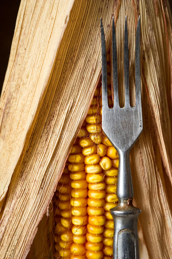 Corn And Fork Close-up. Royalty Free Stock Photography