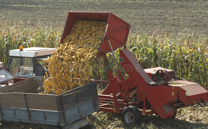 Download Corn Harvester Stock Photos - Image: 1410963