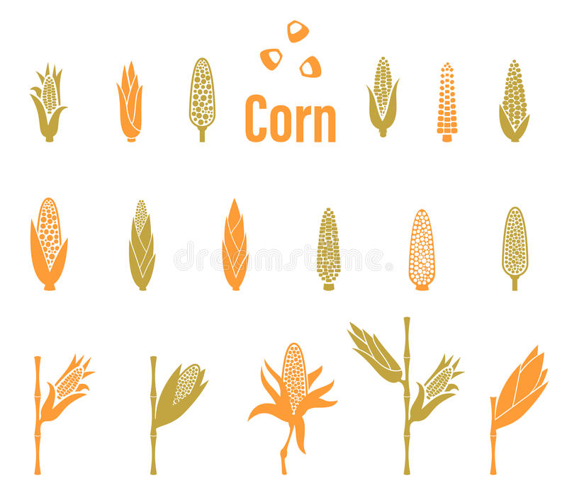Corn icons. Agriculture Logo template. royalty free illustration