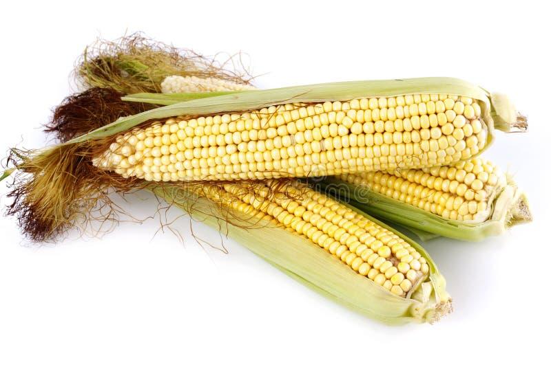 Download Corn Stock Photos - Image: 30178963