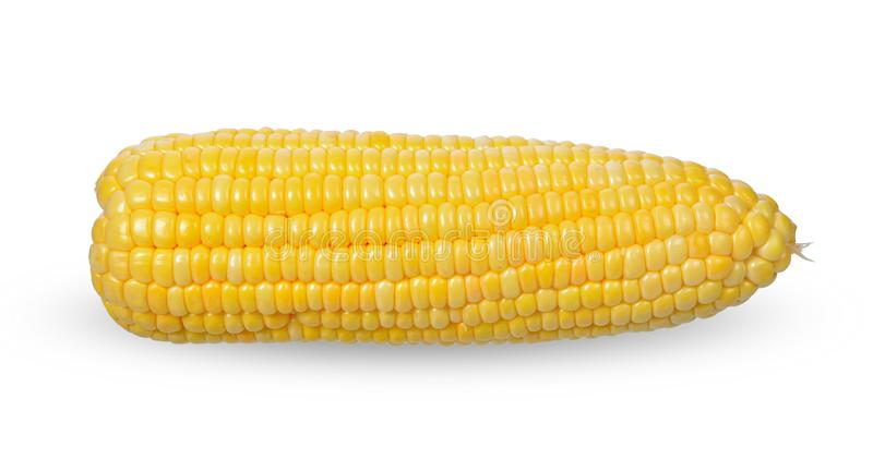 Corn on white background. with clipping paths royalty free stock photo