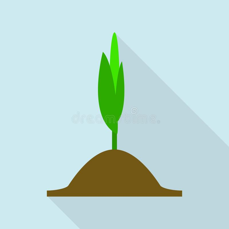 Corn plant icon, flat style. Corn plant icon. Flat illustration of corn plant vector icon for web design vector illustration