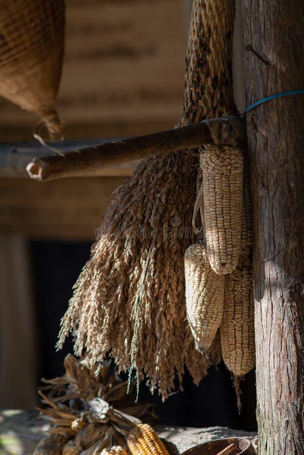 Corn and rice straw hanging in barn. In Cat cat village, SAPA,Vietnam stock image