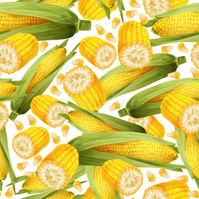 Corn seamless pattern stock vector illustration of for Corn stalk template