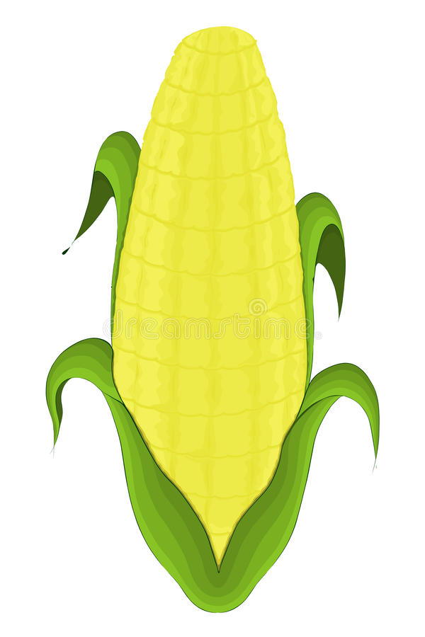corncob stock illustratie