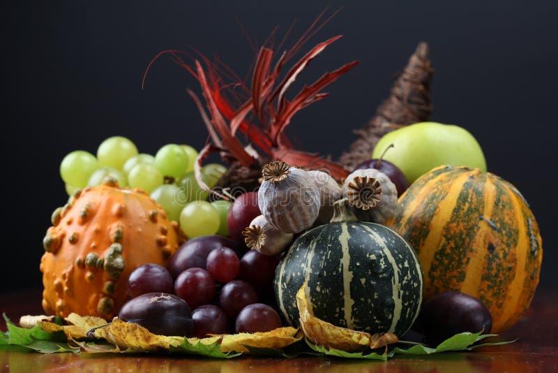 Corne d'abondance d'automne photographie stock libre de droits