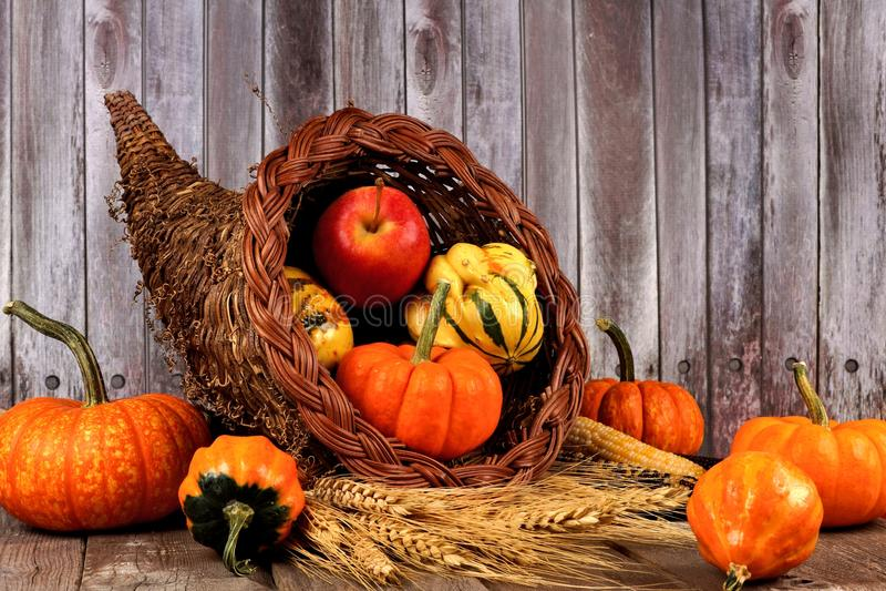Corne d'abondance de récolte sur un fond en bois rustique image libre de droits