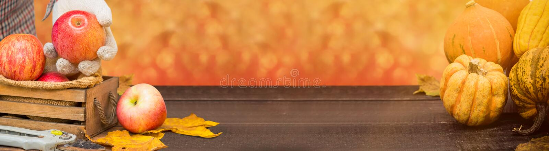 Corne d'abondance heureuse de récolte de thanksgiving et de chute photo libre de droits