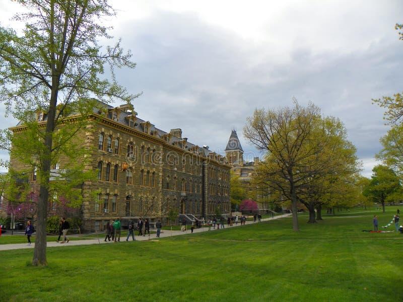 Cornell Arts Quad Historic District durante a primavera imagens de stock royalty free
