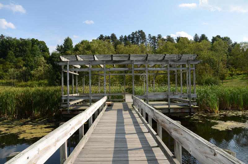 Cornell Botanic Gardens, Houston Pond Walkway och Gazebo royaltyfria bilder