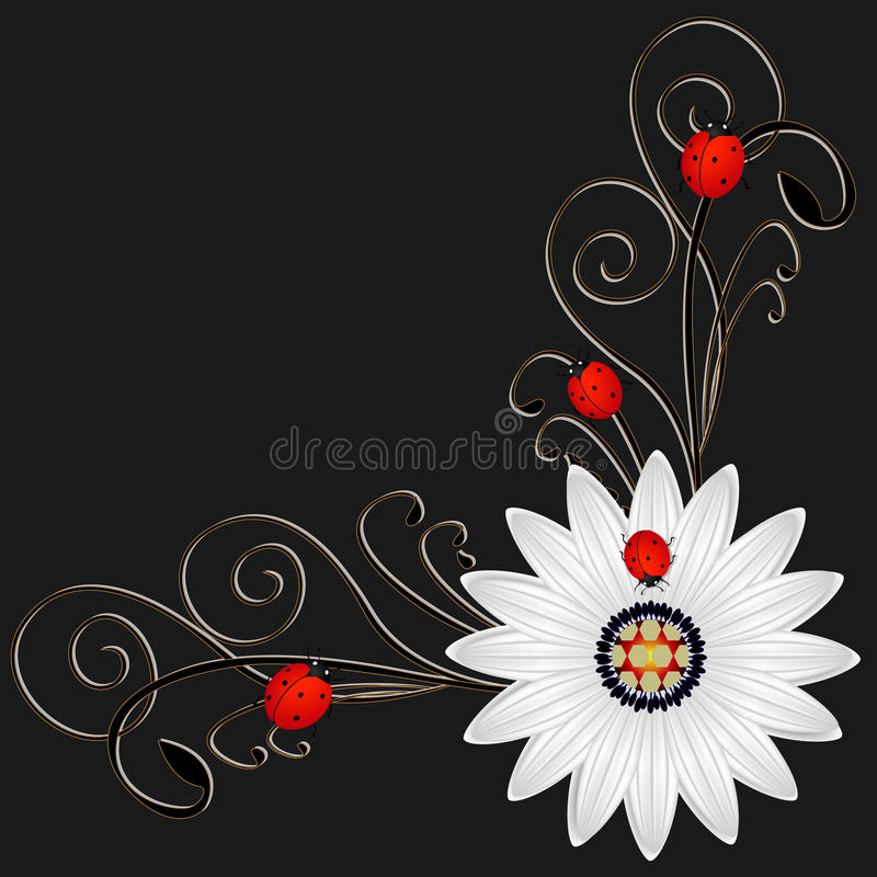 Corner with abstract daisy a red ladybugs on a black background. royalty free illustration