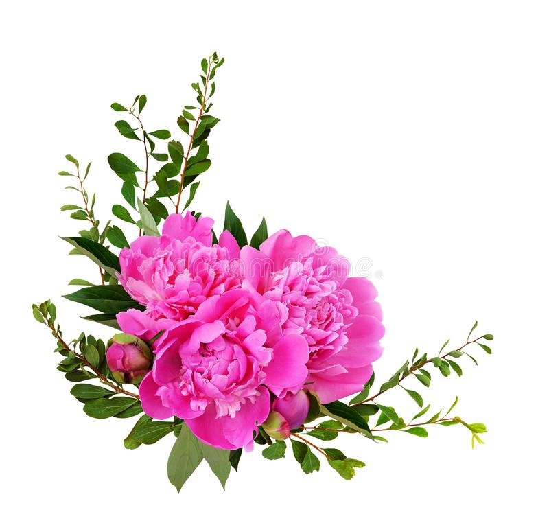 Corner arrangement with peony flowers and green leaves stock photo