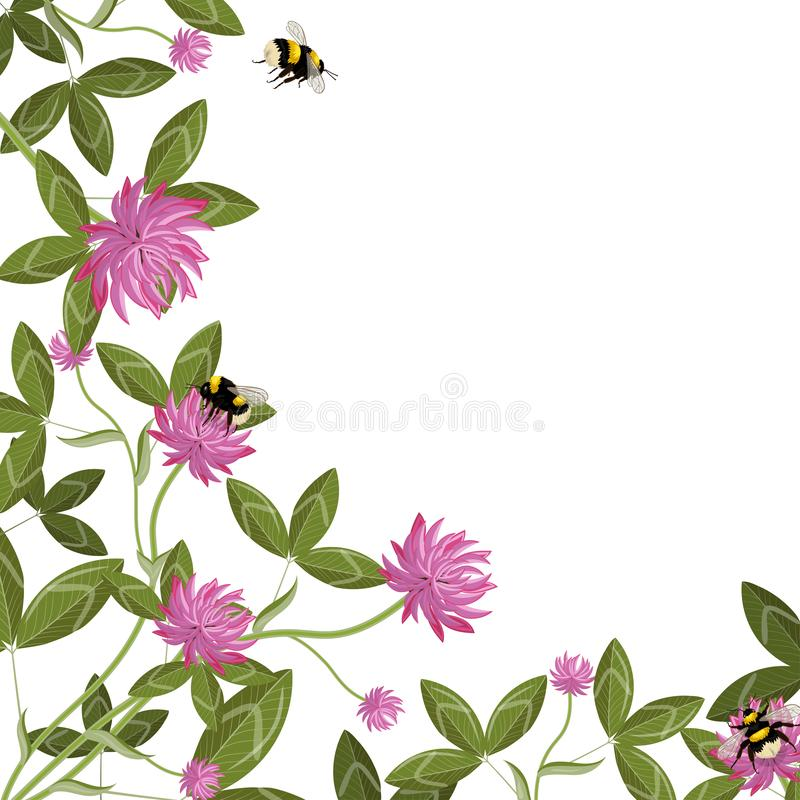 Corner border of clover leaves, flowers and bumblebees, empty floral frame on a white background. Vector composition stock illustration