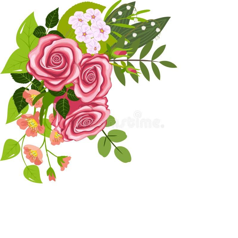 Corner composition of rose vector illustration