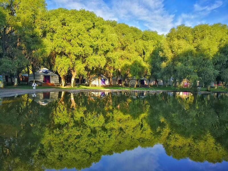 A corner of the holiday park scenery. The dense woods, clear lake, blue sky and white clouds, there are trees and blue sky and white clouds in the lake royalty free stock image