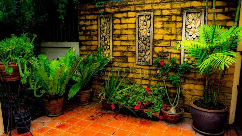 At the corner of my garden stock photo