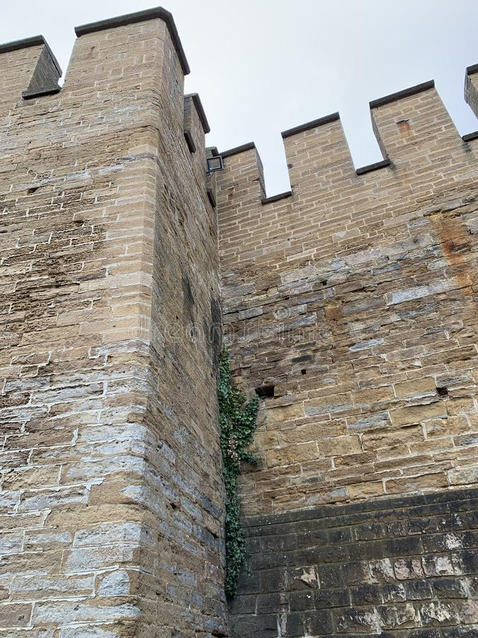 Free Corner Of The Castle Walls With Ivy Growing In It Royalty Free Stock Photography - 168403227