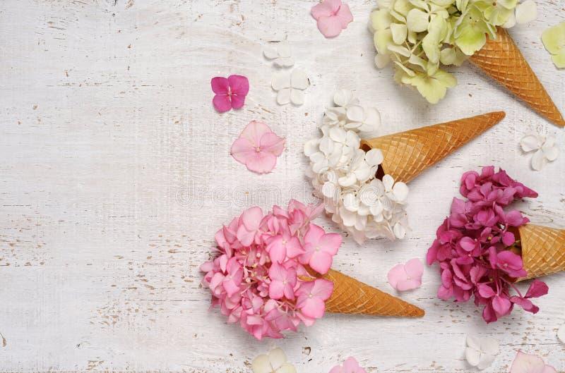 Cornets de crème glacée avec des fleurs d'hortensia image libre de droits