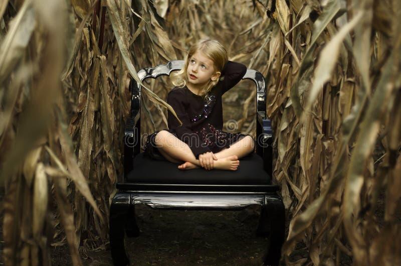Cornfield Girl royalty free stock image