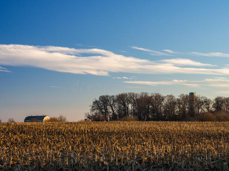 Cornfield and Barn in Autumn at Sunset royalty free stock photography