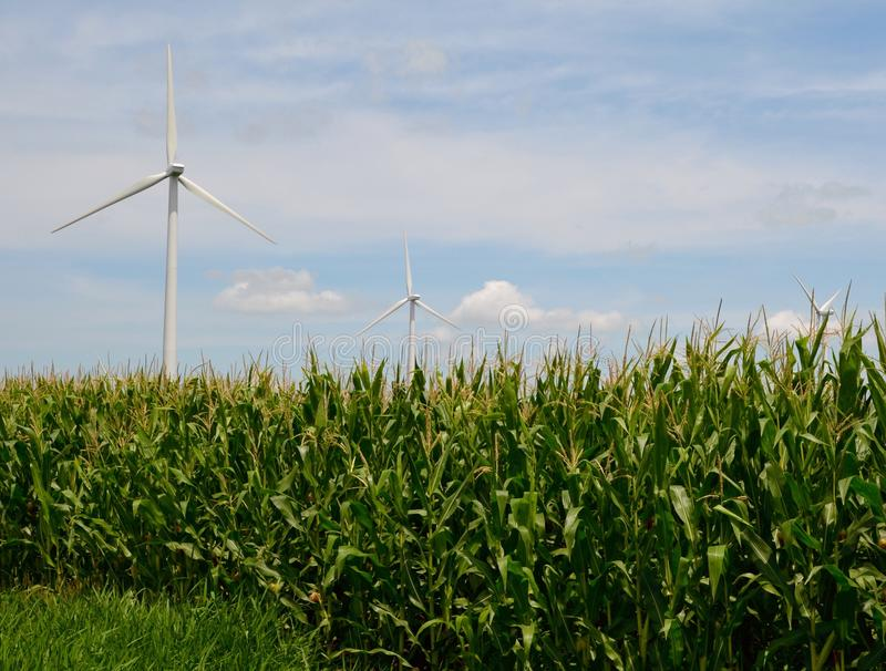 Cornfield Turbines. This is a Summer picture of wind turbines located in a cornfield in Putnam County, Illinois. This picture was taken on July 15, 2015 stock image