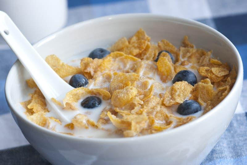 cornflakes стоковые фото