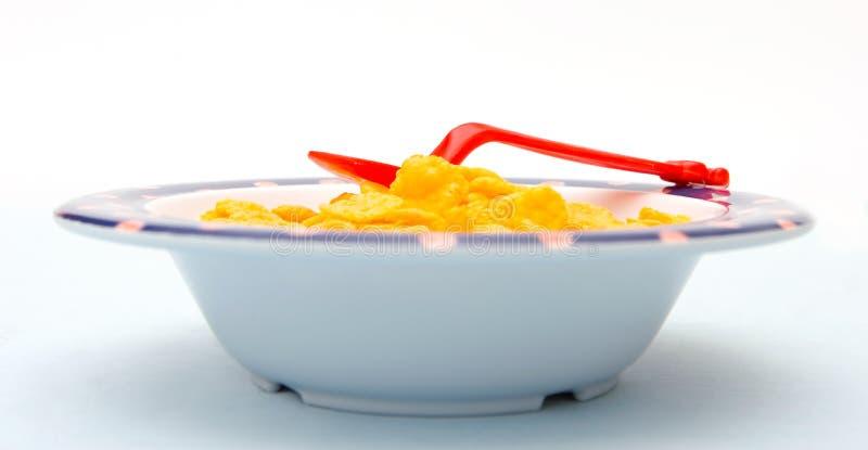 cornflakes стоковая фотография rf
